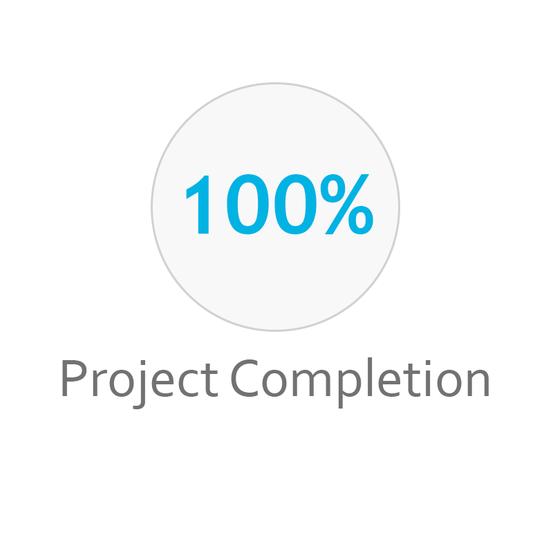 100-project-completion-proof-point