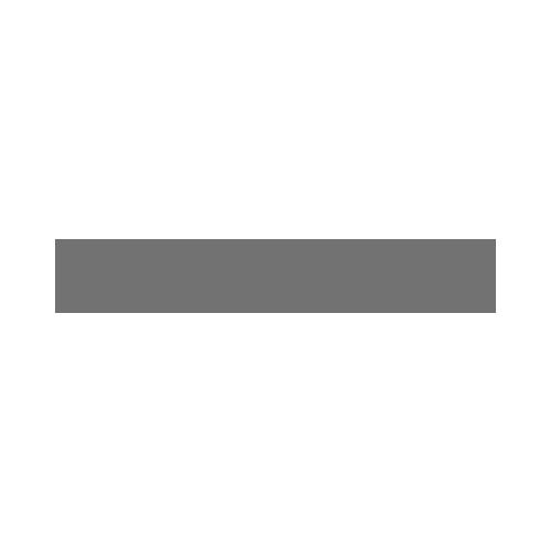 autodesk-grey